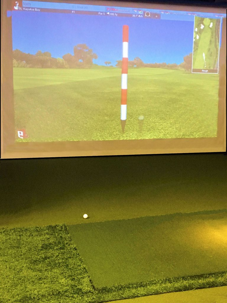 Golf For Less Simulator